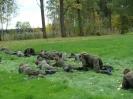 Klasa wojskowa Ie na poligonie